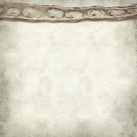 textured old paper background with beans Stock Photo - 29547438