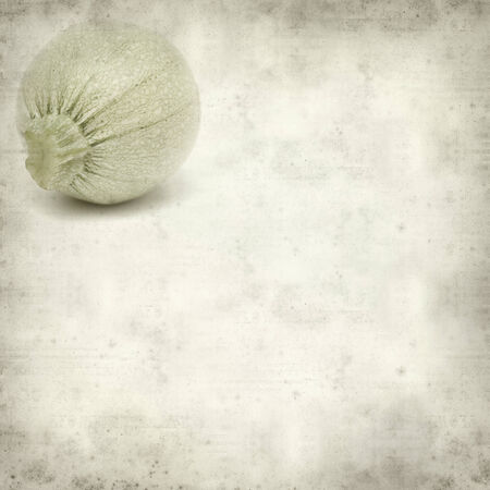 white textured paper: textured old paper background with white zuccini