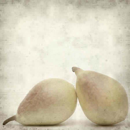 textured old paper background with pears photo