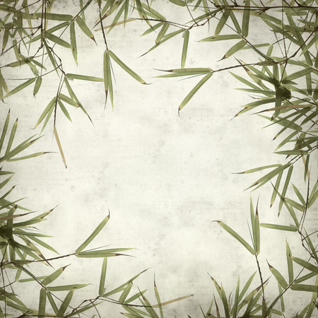 textured old paper background with bamboo leaves photo