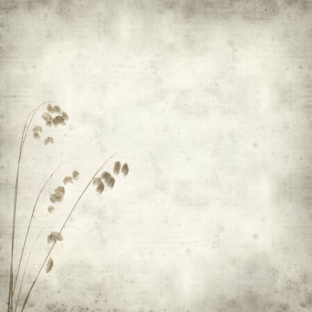quacking: textured old paper background with Biza, quacking grass Stock Photo