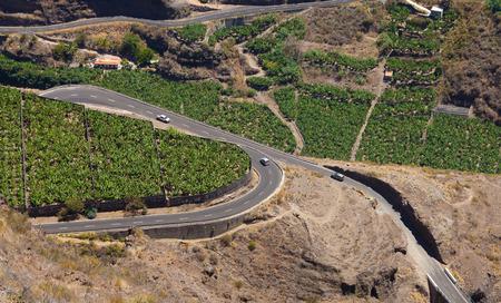 mirador: La Palma, Canary Islands, view from viewpoint Mirador el Time towards a loop in the road