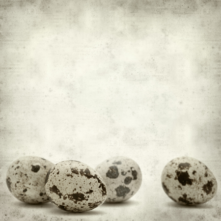 textured old paper background with quail eggs photo