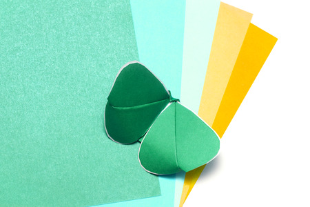 pliable: color paper and kirigami batterfly