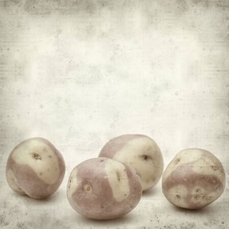 canarian: textured old paper background with pink canarian potato Stock Photo