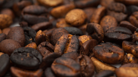 speciality: speciality coffee - coffee from Gran Canaria, Agaete valley, background
