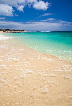 burro: Fuerteventura, Burro Beach, part f Grandes Playas de Corralejo on the north of the island Stock Photo