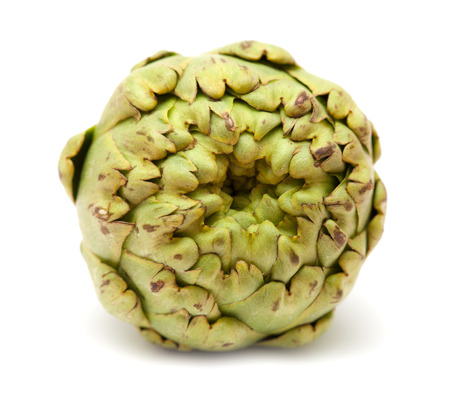 globe artichoke isolated on white background photo
