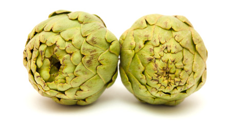 cardunculus scolymus: globe artichoke isolated on white background