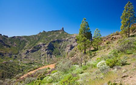 Gran Canaria, view across Caldera de Tejeda towards Roque Nublo photo