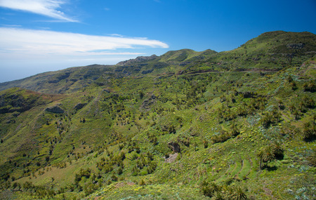 terraced: Inland La Gomera, green terraced valley sloping down to the ocaen Stock Photo