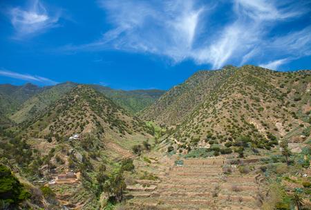 vallehermoso: La Gomera, Vallehermoso, view  across valley to cultivation terraces