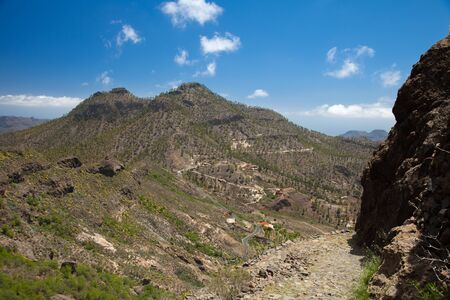 hillwalking: Gran Canaria, hiking route Cruz Grande - Llanos de la Pez, steep footpath, camino real, against the wall of the valley