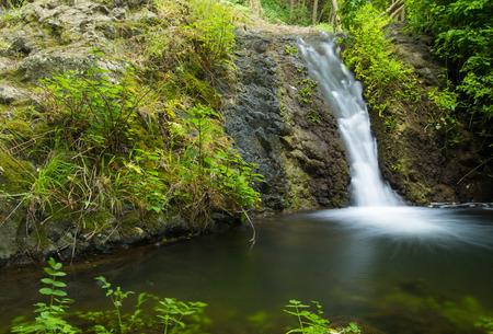 source d eau: Gran Canaria, r�serve naturelle Barranco de Azuaje entre Moya et Firgas, l'une des rares sources d'eau sur l'�le, petite cascade