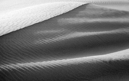 corralejo: Northern Fuerteventura, Canary Islands, nature reserve Dunes of Corralejo, monochrome
