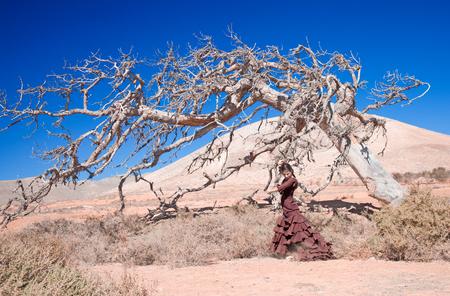 bailando flamenco: el flamenco y el árbol muerto - hermosa mujer bailando flamenco joven contra el fondo natural
