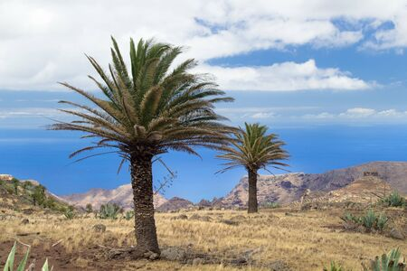towards: La Gomera, Canary islands, view towards south coast from hiking trail GR 131