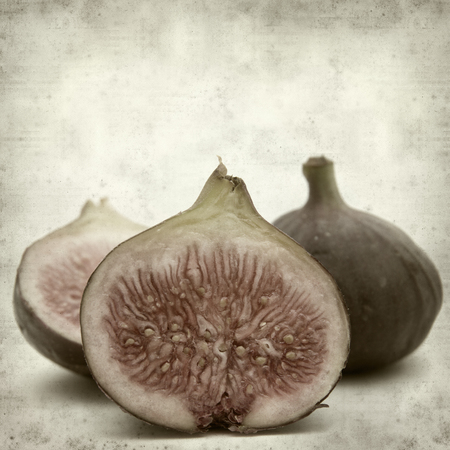fig fruit: textured old paper background with ripe dark fig fruit