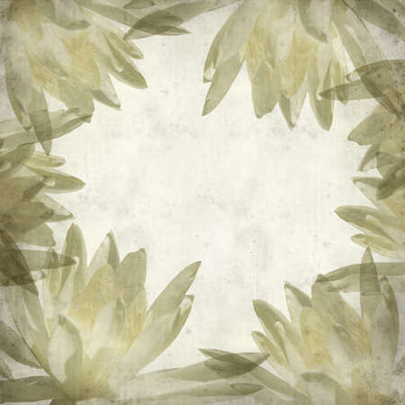 textured paper: textured old paper background with yellow water lily Stock Photo