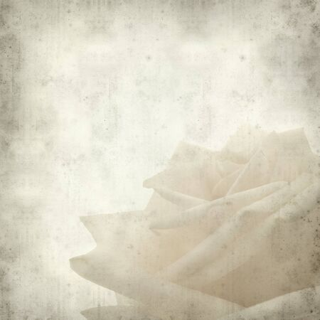 gentle: textured old paper background with gentle pink and yellow rose Stock Photo