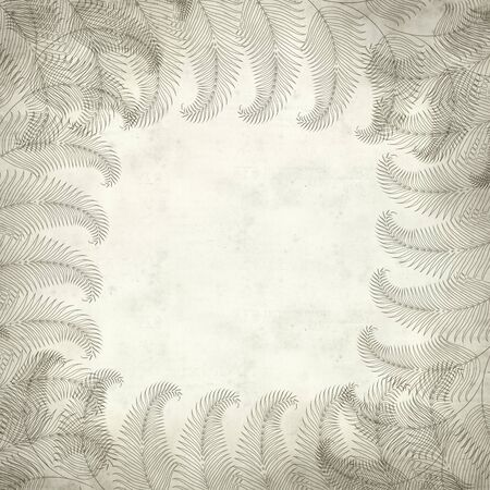 textured paper: textured old paper background with fern illustration