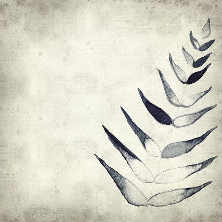 spiralling: textured old paper background with watercolor paint fern leaves