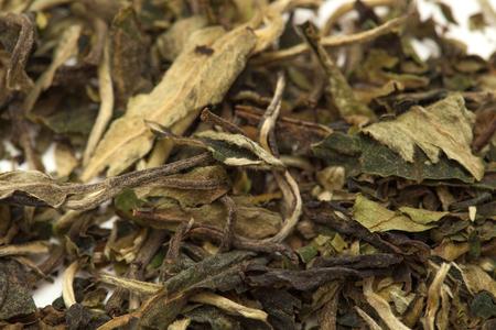 food stuff: white tea  Pai Mu Tan leaves food stuff background