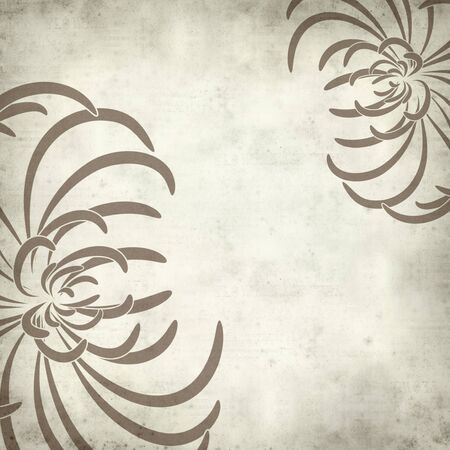 dry flowers: textured old paper background with spider chrysanthemum illustration