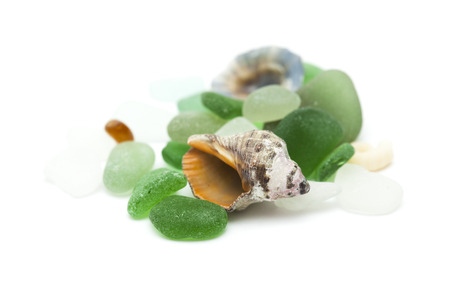beachcombing: sea glass pieces and shells isolated on white