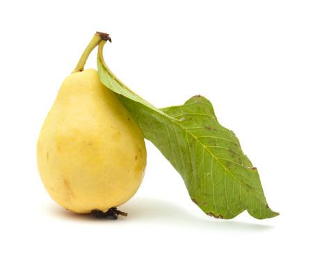 guayaba: amarillo, normalmente llamado blanco, guayaba aislado sobre fondo blanco