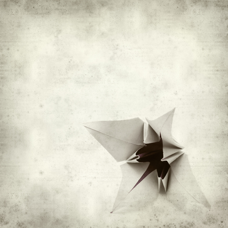textured paper: textured old paper background with origami paper lily