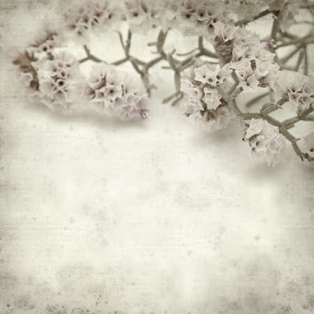 papery: textured old paper background with pale lilac Limonium flowers