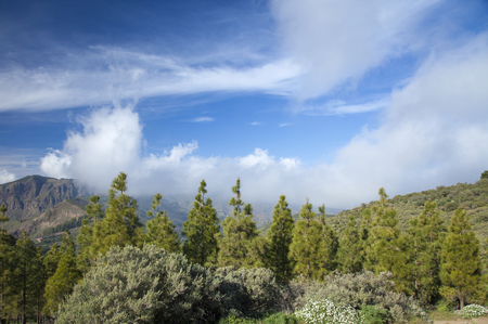 north window arch: Gran Canaria, Las Cumbres - the highest areas of the island, clouds rolling over from the north