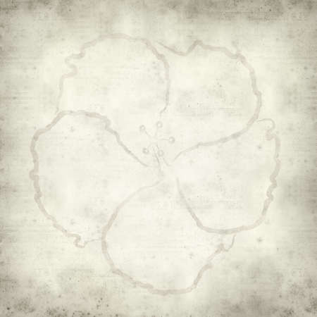 interesting: textured old paper background with hibiscus illustration