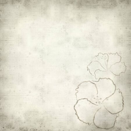 textured paper background: textured old paper background with hibiscus illustration