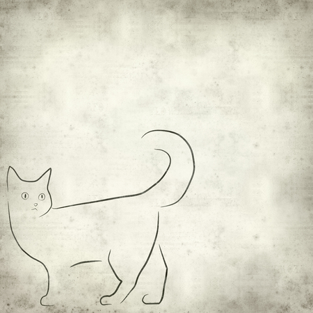 natural backgrounds: textured old paper background with simple cat illustration Stock Photo