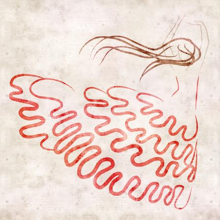 danseuse flamenco: Danseuse de flamenco figure, dessin à la main, sur la texture vieux papier Banque d'images