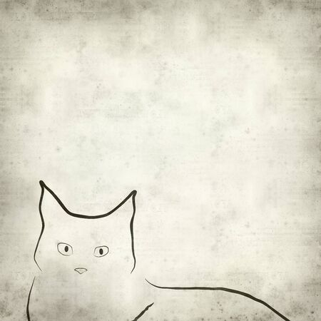 textured paper background: textured old paper background with cat illustration