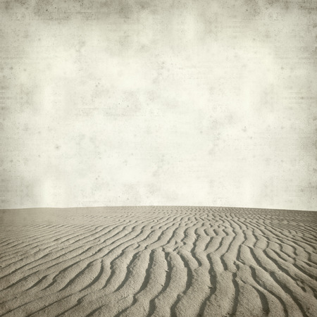 curving lines: textured old paper background with dune surface