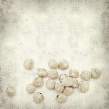 shelled: textured old paper background with shelled hazelnut