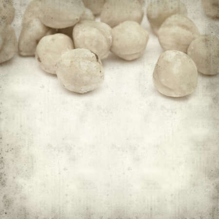dry cleaned: textured old paper background with shelled hazelnut