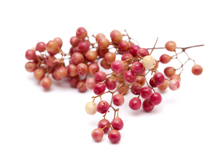 peppery: pink peppercorn clusters isolated on white background Stock Photo
