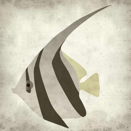 angelfish: textured old paper background with angelfish illustration