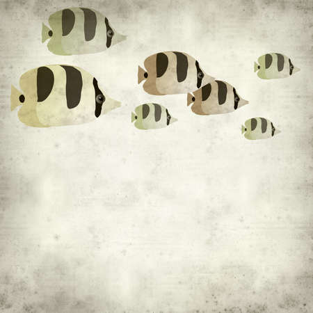 interesting: textured old paper background with butterfly fish illustration