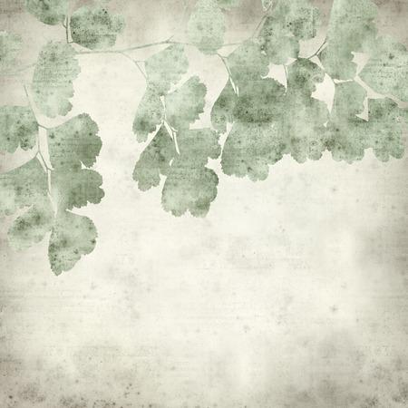 textured: textured old paper background with maidenhair fern leaf