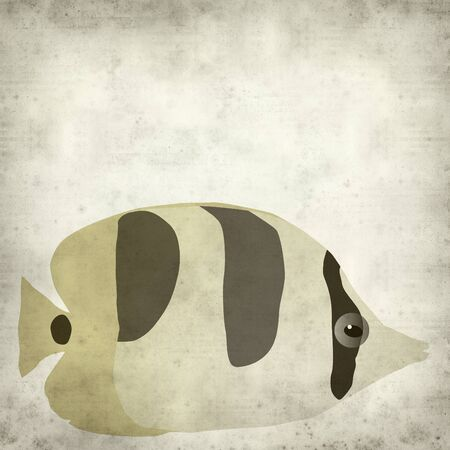 butterfly fish: textured old paper background with butterfly fish illustration