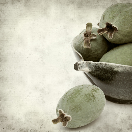 fruiting: textured old paper background with green feijoa fruit Stock Photo