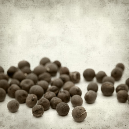 sweet pea: textured old paper background with scattered sweet pea seeds Stock Photo