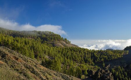 Central Gran Canaria, protected landscape of Roque Nublo, December Stock Photo