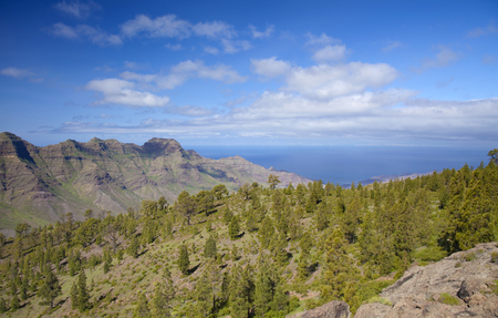 West Gran Canaria in February, hiking path through old pine forest around Integral Nature Reserve Inagua, view towards La Aldea de San Nicolas Stock Photo